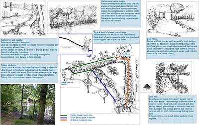 Southcrest Woodlands Plan